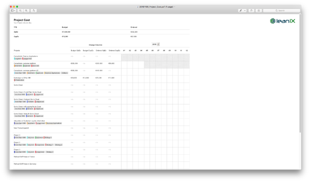A PDF report of a Project Cost Report as generated from LeanIX.