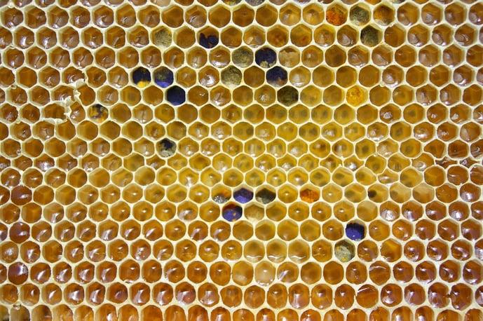honey-2441542_1280.jpg