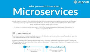What you need to know about Microservices in an Infographic