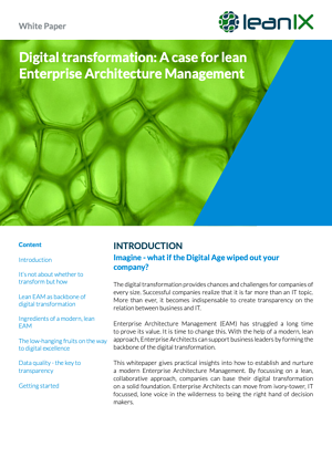 Digital Transformation: A Case for Lean Enterprise Architecture Management